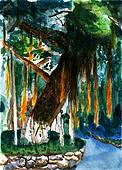 watercolor banyan painting