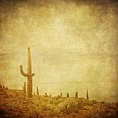 grunge background with wild west landscape