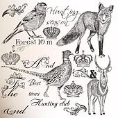 Collection of vector hand drawn animals for  hunting design