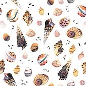 Seashell Watercolour Pattern