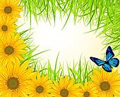 background with yellow sunflowers, green grass and butter