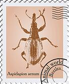 Vector stamp with a beetle