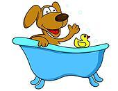 Dog bathing