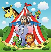 Circus theme picture 1
