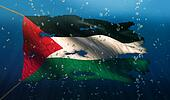 Palestine Under Water Sea Flag National Torn Bubble 3D
