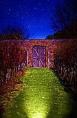 Night garden