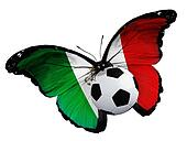 Concept - butterfly with  Albanian flag flying near the ball, li