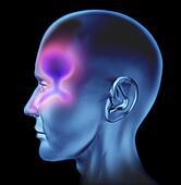Human Nasal congestion