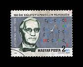 HUNGARY - CIRCA 1981: cancelled grunge stamp printed in Hungary, shows famous medical specialist, penicillin creater A. Fleming (1881-1955) with drug formula, circa 1981.