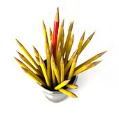 Group of many yellow pencils into a bin, with one red pencil standing out from the mass.