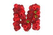 Raspberry letter M on white background