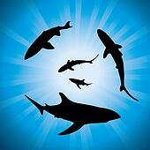 vector silhouettes of sharks underwater and sunlight