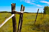 PhotoArt Prairie fenceline and gate