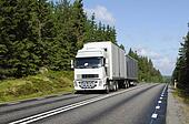 truck driving on scenic forest road