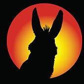 donkey in circle with color background