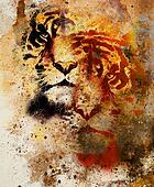 tiger collage on color abstract  background and mandala with ornament , wildlife animals. Brown, orange, black and white color.