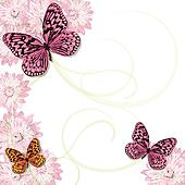 Butterflies and daisies Invitation