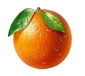 Orange fresh fruit with two leaves and water droplets, on white