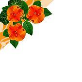 Bouquet, floral background