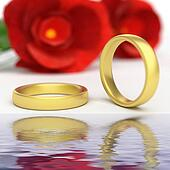 Wedding Rings Represents Reflective Reflect And Wedlock