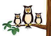 owl family cartoon
