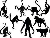 Vector - Monkey silhouettes collect
