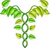 Natural or alternative medicine con