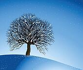 Winter Landscape. Lonely Tree