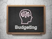 Finance concept: Head With Finance Symbol and Budgeting on chalkboard background