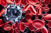 Virus in blood