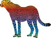 cheetah - vector abstract rainbow