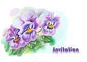Invitation with pansy flowers.