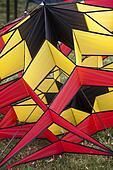 lorful kites