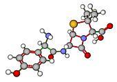 Amoxicillin molecular model