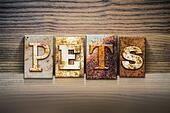 Pets Concept Letterpress Theme