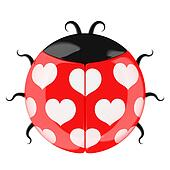 Cute lady bug.