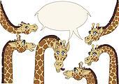 A few giraffes background