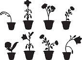 Shadows flower pot
