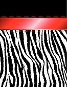 Zebra Stripes & Red Ribbon