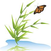 vector grass, water and butterfly