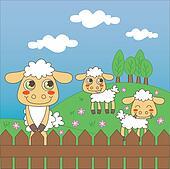 Baby Sheep Grazing
