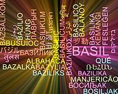 Basil multilanguage wordcloud background concept glowing