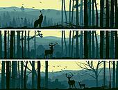 Wild animals in hills wood.