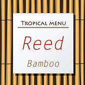 Vector white banner hang on bamboo