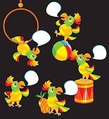 Set of parrot cartoons