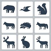 Vector forest animals icons set