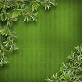 Deciduous tree branch on the background of abstract green wall