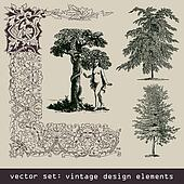 set of design elements - tree, eva