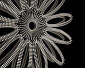 Jewelry ornament background design