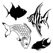 set of fish on white background